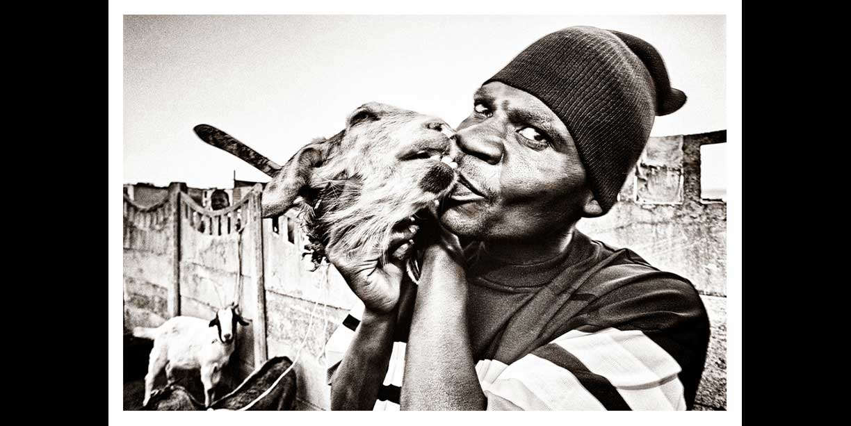 image of african traditional healer or sangoma